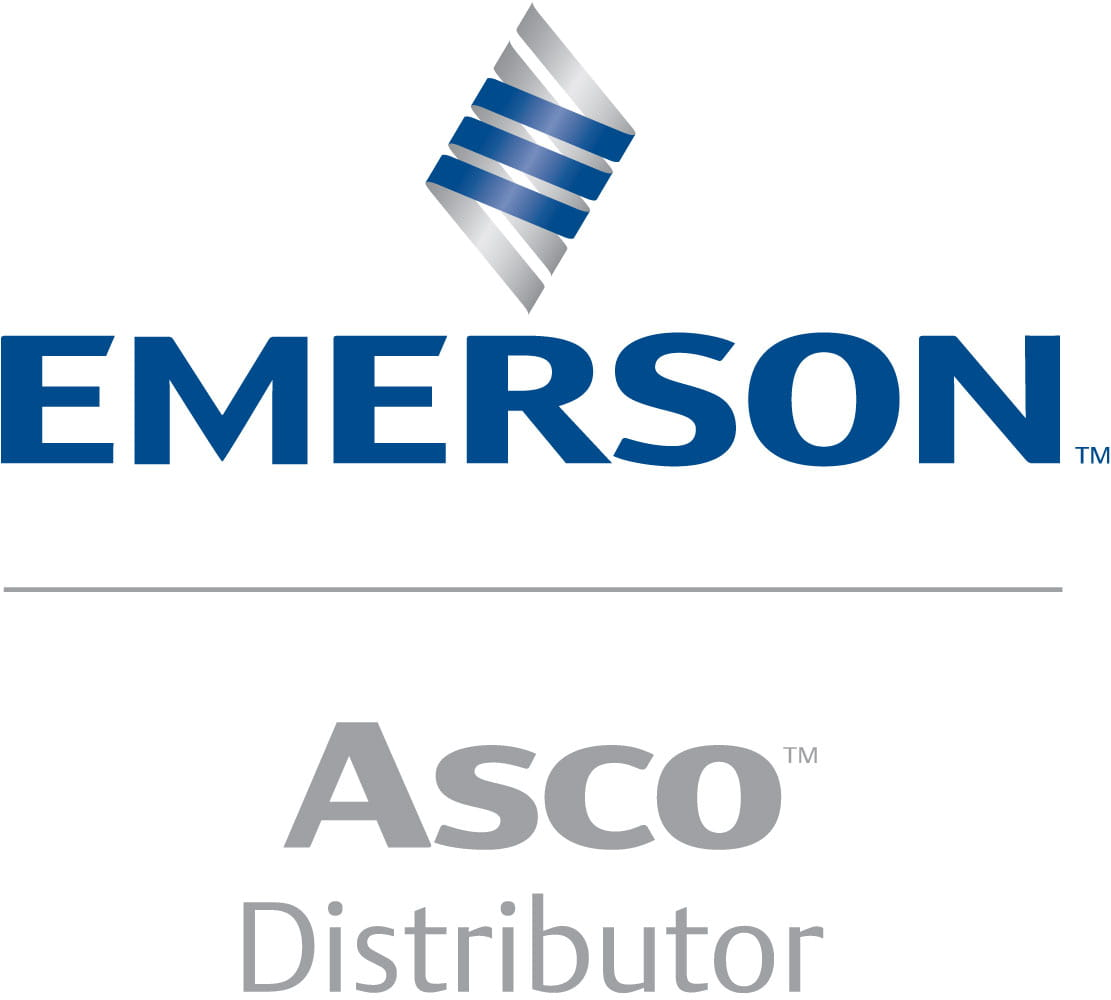 OEM Automatic Emerson Asco